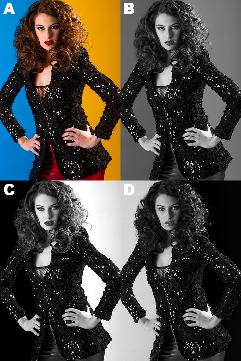 "Figure 1. Variations using Photoshop's B&W Adjustment Layer Properties. (A) Original color image. (B) ""Auto"" button applied. (C) Yellow slider to the right, Blue slider to the left. (D) Red, Blue, and Cyan sliders to the right, Yellow to the left."